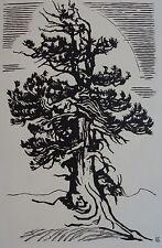 SCHMIED FRANÇOIS –LOUIS (1873-1941) : L'arbre. Bois original.  BYBLIS, 1921
