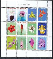 SINT MAARTEN 2014 - BLOEMEN / FLOWERS - POSTFRIS VELLETJE VAN 12