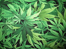MARIJUANA POT WEED 420 CANNIBUS PLANT COTTON FABRIC FQ