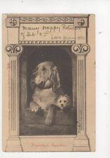 Diginity & Impudence [5335]1903  Tuck Calendar Postcard 097b