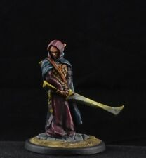 Painted Dalyn Talas, Elven Sword Mage from Reaper Miniatures, male warrior
