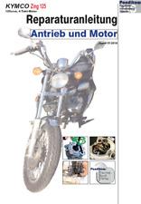 Reparaturanleitung RIS für Kymco Zing 125, Antieb und Motor