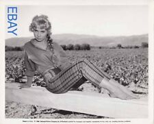 Cindy Robbins sexy leggy barefoot VINTAGE Photo