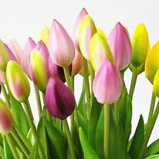 7Pcs/Grupo verdadero toque suave silicona tulipanes de flor artificial para el Hogar Boda