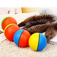Pet Dog Cat Weasel Motorized Fun Rolling Ball Pet Appears Jump Moving-Ali Prof