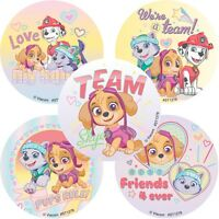 Paw Patrol Stickers x 5 - Birthday Party Supplies - Favours - Skye Stickers