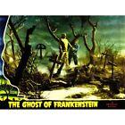 Movie Film Ghost Frankenstein Monster Horror Graveyard Cemetery Usa Framed Print