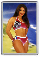 Jet Gladiators TV show Diane Youdale Fridge Magnet