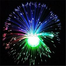 Multicolor LED Fiber Optic Lamp Light Holiday Wedding Centerpiece Fiberoptic LP