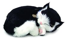 PERFECT BLACK&WHITE SHORTHAIR PLUSH BREATHING HUGGABLE ANIMAL CAT REAL KITTEN