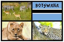 BOTSWANA, SOUTH AFRICA - SOUVENIR NOVELTY FRIDGE MAGNET - BRAND NEW - GIFT