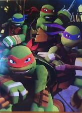 Teenage Mutant Ninja Turtles No Words on Portfolio Folders w/Evil Guy New 2014