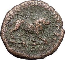 COMMODUS Marcus Aurelius Son RARE Ancient  Roman Coin Monster Nemean Lion i48001