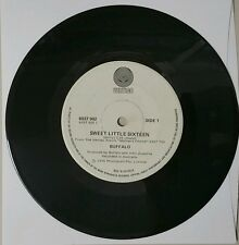 "BUFFALO Sweet Little Sixteen / Essukay Vinyl Single 45 Record 1976 ""Very Rare"""