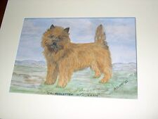More details for antique famous champion cairn terrier dog painting 1952 by a.d.kay