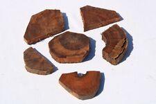 Snakewood Epoxy Resin Cut offs Exotic Figured Wood Turning Lumber Blank Craft