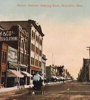 Postcard, 1911, Brandon Manitoba Roster Ave Horse, Hand Tinted Vintage P12