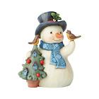 Jim Shore 2019 Hello Winter - Pint Snowman With Birdhouse 6004289 NEW Christmas