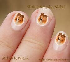 Shetland Sheepdog, Sheltie, Set De 24 Perro Arte De Uñas Stickers Calcomanías por kerioak