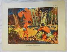 Vintage Schools Poster - 1930s - 1940s - Original - A Rubber Plantation