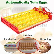 32 Huevos Incubadora Automática Incubator Incubar Hatcher Pato Pájaro Egg Tray