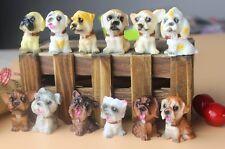 12 Pieces Miniature Dog Figurines  Terrarium Accessories Fashion Home Decoration