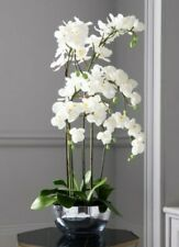 NEW XXL white orchid deluxe artificial 9 head plant 115cm wedding events house