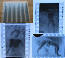 36 Foto - Negative AKT / NUDE / PIN UP aus Fotografen Nachlass 50iger Jahre