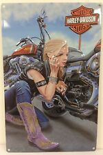 Ande Rooney HARLEY DAVIDSON FINISHING TOUCH Tin Motorcycle Garage Sign HD Girl