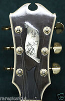 Jimmy D'Aquisto Rare Chambered Body Electric Guitar 1979 1 of Lifetime 18 Total