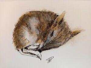 Bandicoot Marsupial Original painting watercolour signed animal painting