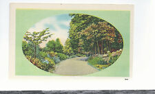 Country Lane  In The Mountains  In The Spring     Unused   Postcard 8264