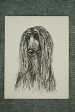 Afghan Hound Pen and Ink Stationary Cards, Note Cards, Greeting Cards. 10 pack.