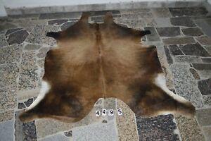 WATUSI  Rug HAIR ON SKIN  Leather Cowhide Rug  4495-   70'' x  56''