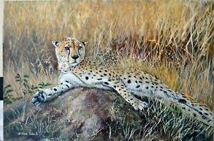 William John Jr Reclining Cheetah 24x36 Acrylic Wildlife Painting on Canvas
