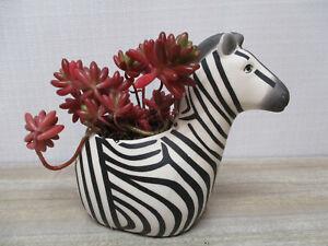 Succulent planter Zebra animal planter for any small plants
