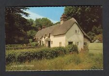 c1970s View: A New Forest Hatched Cottage