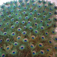 10Pcs DIY Natural Peacock Tail Feathers Wedding Festival Party Home Decoration