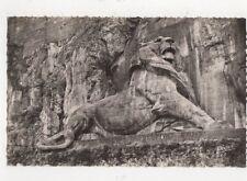 Belfort Le Lion France Vintage RP Postcard 488a