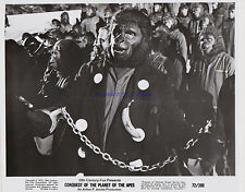Oonquest Of The Planet Of The Apes Roddy Mcdowall Original 1972 8X10