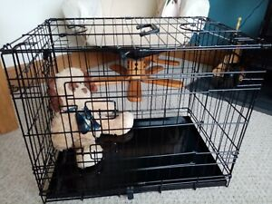 """pgo dog crate black small. 24"""" x 17"""" x 19"""". Two entry doors both with two locks"""