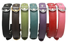 Angel Alpine Genuine Leather Dog Puppy Collars