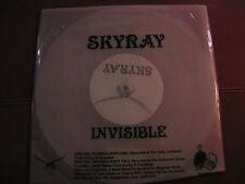 """Skyray - Invisible Ochre Records  2 Track 10"""" OCH011"""