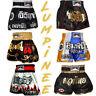 LUMPINEE MUAY THAI SHORTS YOKKAO SAENCHAI LUMPINI MMA TWINS FAIRTEX UFC BUAKAW