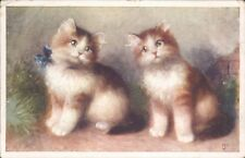 Postcard cats Kittens bow on Collar posted 1918