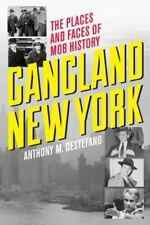 Gangland New York: The Places and Faces of Mob History, DeStefano, Anthony M., A