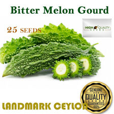 25 Seeds Long Green Bitter Melon Gourd  Luffa 100% genuine best Organic
