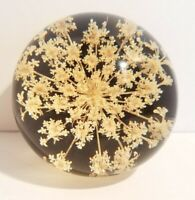 """EUC~TARAX QUEEN ANNES LACE 3"""" INFINITY LUCITE ACRYLIC PAPERWEIGHT MADE IN CANADA"""