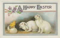 ~Cute White Bunny Rabbits with Chick~Antique Easter Postcard-p553