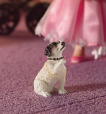 Fergie The Jack Russell Terrier, Dolls House Miniature, Pets, Dog, Miniatures
